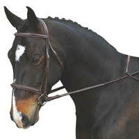 "Da Vinci Fancy Raised Padded Bridle with Fancy Raised 5/8"" Fancy Raised Laced Reins - Chestnut"