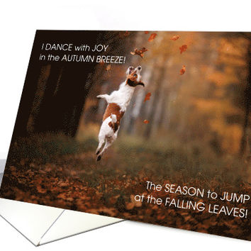 from the Dog Thanksgiving Dance of Joy JRT card