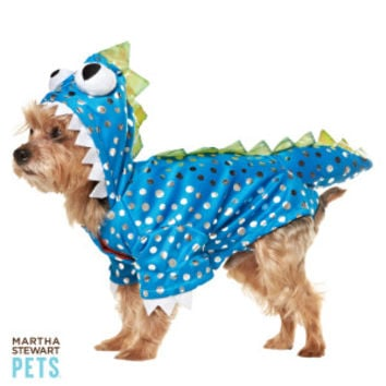 Martha Stewart Pets® Blue Dragon Costume - Dog Halloween - Dog - PetSmart