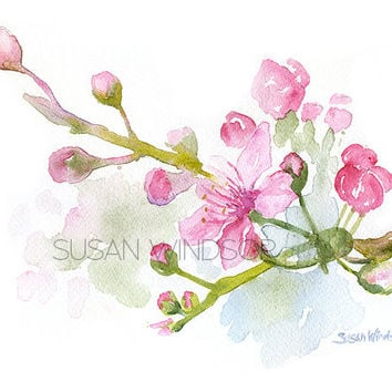 Cherry Blossoms Watercolor Painting - 11 x 14 - Giclee Print - Floral Painting - Flower Art - Reproduction