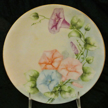 Antique Hand Painted Porcelain Austria Austrian Plate Morning Glory Glories Nature Botanical Flowers Floral Country Cottage  Art Painting