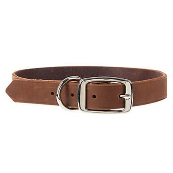 Top Paw® Dog Collar