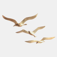 Brass Seagull Sculptures, Metal Bird Wall Art Set