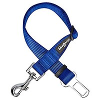 Blueberry Pet Solid Color Collar Collection, 12 Colors Classic Nylon Dog Collars & Seat Belts, 17 Colors Personalized Collars, Matching Leash Harness Available Separately