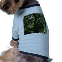 Branching Out Dog Clothes