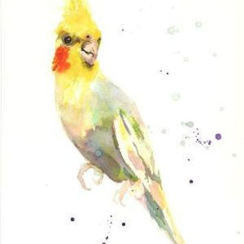 Cockatiel ART Popcorn Percy Fine Art print 8x10 by eastwitching