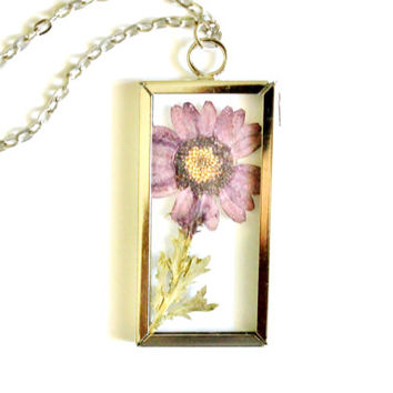 Terrarium Necklace Real Pressed Flower, Purple Daisy in Glass Pendant, Woodland Nature Jewelry, Silver Tone Frame with Antique Silver Chain