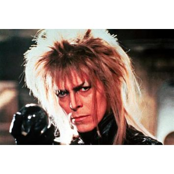 Labyrinth Movie poster Metal Sign Wall Art 8in x 12in
