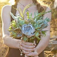 Succulent Bouquet: Wedding Bridal Pastel Collection