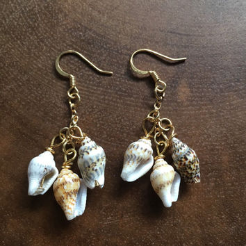 Seashell Earrings, Beach Earrings, Ocean Earrings, Summer Earrings, Shell Earrings, Dangle Earrings, Mini Conch Shell Earrings