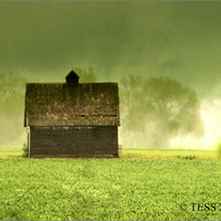 Rustic Old Corn Crib Photo - 8 x 10 Photography - SPRING  - Rain And Fog - Sunshine - sUMMER