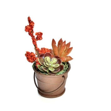 Fairy Garden Miniature Rusty Pail with Artificial Succulents Fall Colors
