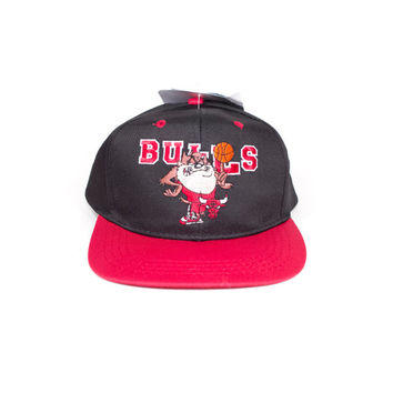 deadstock 90s TAZ CHICAGO BULLS hat - vintage 1990s - looney tunes - space jam - nba - basketball - snapback cap - youth - adult xs