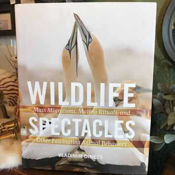 """Wildlife Spectacles: Mass Migrations, Mating Rituals, & Other Fascinating Animal Behaviors"""