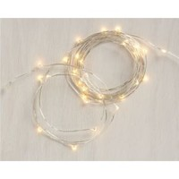 Twinkle Silver 10' String Lights