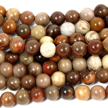 6mm Brazil Petrified Wood Beads -15 inch strand
