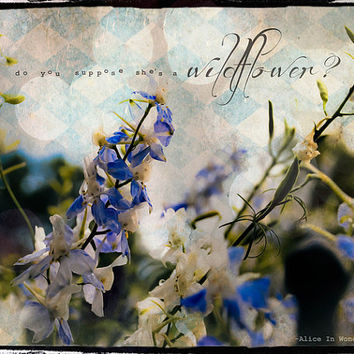 She's A Wildflwoer - PHOTO, Alice in Wonderland quote, Do You Suppose She's A Wildflower, garden photography, flowers, blue, nursery decor