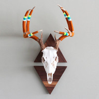 CUSTOMIZE YOUR OWN: Vintage Yarn Wrapped Triangle Mounted European Antler Spread
