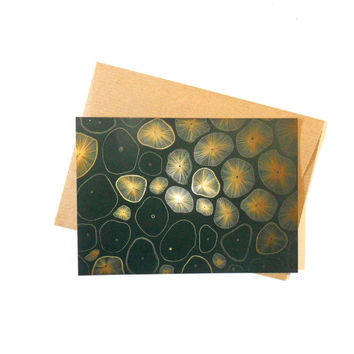 Postcard with envelope, Microorganisms, biological illustration, illustrated postcard, gold painting