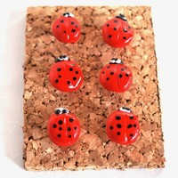 Ladybug Giant Pushpins Thumbtacks for Bulletin Board Cork Boards