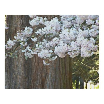 Sequoia Tree and Cherry Blossoms Photo Panel Wall Art