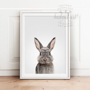 Nursery animal print PRINTABLE art,baby rabbit print,nursery decor,animal art,baby animals,nursery wall art,bunny print,kids art,baby animal