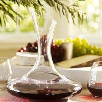 Vino Wine Decanter | Pottery Barn