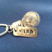 Wish Necklace Dandelion Seed Terrarium