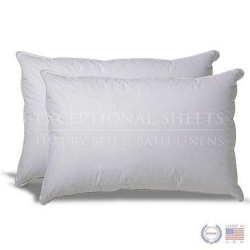 Set of 2 Hypoallergenic Down Alternative Pillows with 100% Cotton Ticking