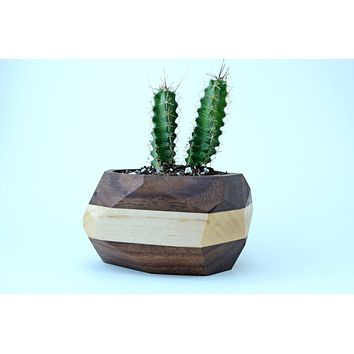 Geometric Wooden Planter Unique Wood Cactus Succulent Pot Terrarium -- Botanical Garden Gift
