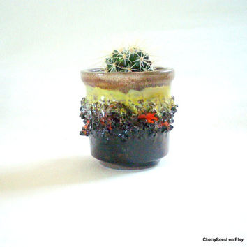 Small planter / cactus planter by Glit Lava Iceland , lava decorated and glazed in brown with lime green and orange.