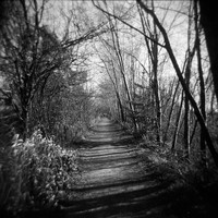 Path (Photography, Holga, Lomography, Nature, Canada)