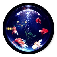 Goldfish bowl sticker
