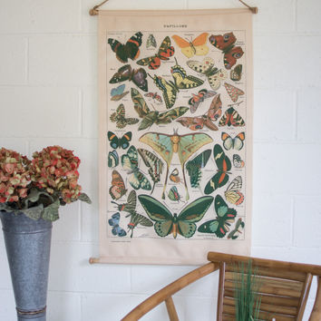 Banner with Butterfly Chart