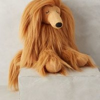 Annabel Afghan Hound by Anthropologie Bronze One Size House & Home