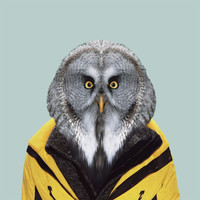 subject matter | Photographic art at its best — Zoo Portrait : Owl (edition of 100)