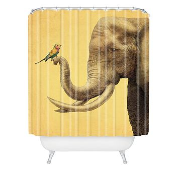 Eric Fan Elephant And Bird Shower Curtain