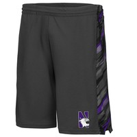 Colosseum Northwestern Wildcats Mustang Shorts
