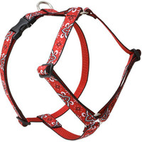 Lupine Wild West Large Dog Harness (1 Inch)