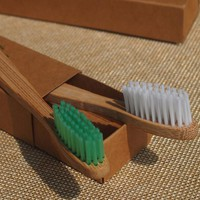 DR.PERFECT Free Shipping 2PCS/lot Eco Environment Bamboo Toothbrush Without Chemical Composition BPA Free Nylon Bristle