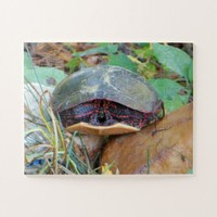 Painted Turtle Hiding Jigsaw Puzzle