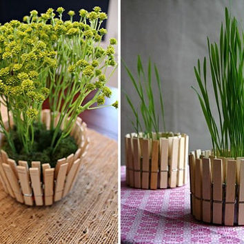 Gorgeous flower vase of wooden pegs. A wonderful pot, flowerpot, jar, planter for your plants. A wonderful gift.