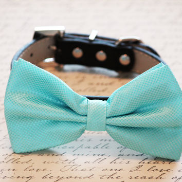 Light Blue Dog bow tie collar, Handmade