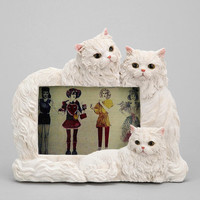 Urban Outfitters - Persian Cat Frame