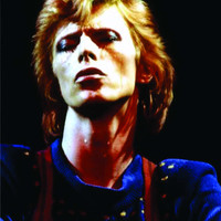 David Bowie, 1974,  Poster, Archival Quality Print