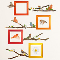 Spring Song Birds Wall Decals