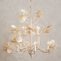 Pearled Magnolia Chandelier by Anthropologie in White Size: One Size Lighting
