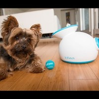 iFetch | Small Dog Fetch Machine