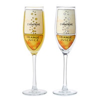 Mimosa Diagram Glassware - Set of 2 | champagne flute, geek glassware