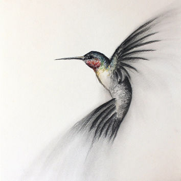 "Original Bird Art Charcoal Drawing of a flying Hummingbird, 11""x14"", one of a kind art, not a print"
